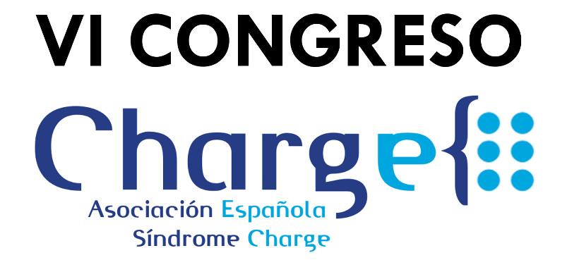 VI Congreso CHARGE